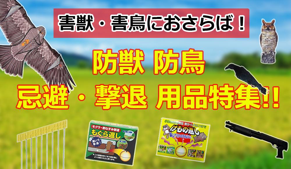 /common/banner/banner07_bojyu.jpg