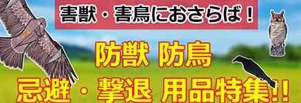 /common/banner/banner10.jpg