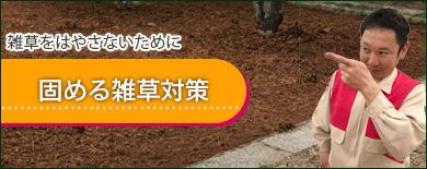 固める雑草対策